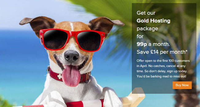 Our Summertime Promo - Click for more details